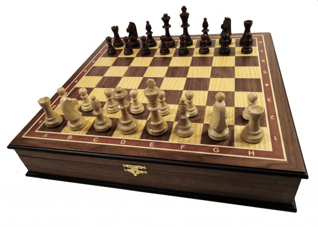 девушки чувствовалось посмотреть профессиональные шахматы видео без которой